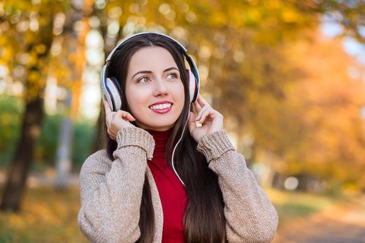 Audio Guides