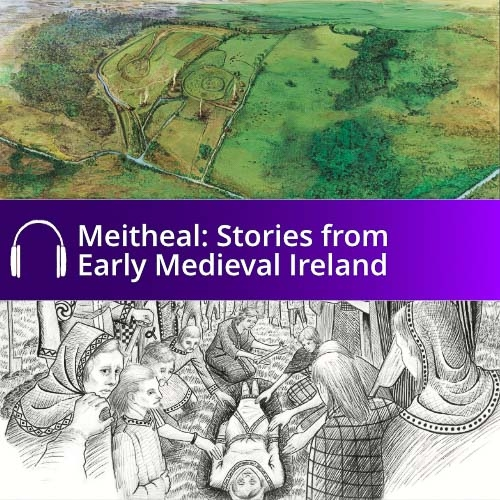 Meitheal Stories from Early Medieval Ireland