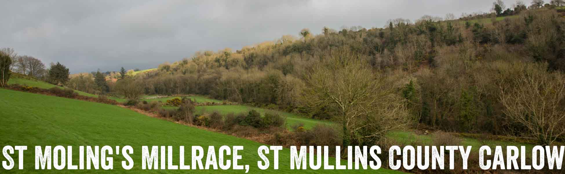 St Molings Millrace County Carlow