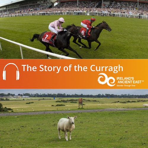 Story of the Curragh Audio Guide