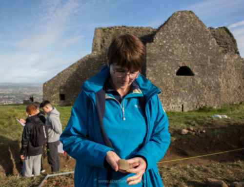 Hellfire Club Archaeological Project Week Three
