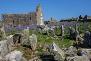 A Trip to Inishmurray