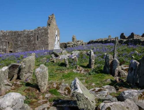 A Trip to Inishmurray