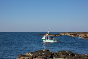 The MV Fiona Tee leaves Clashymore on our trip to Inishmurray