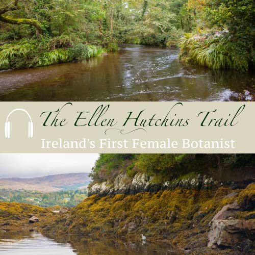 Ellen Hutchins Trail