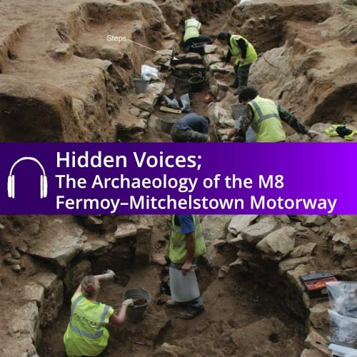 Hidden Voices Audio Book - an audio guide production by Abarta Heritage on behalf of Transport Infrastructure Ireland