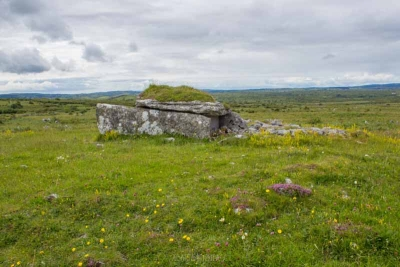 A photograph of Parknabinnia Wedge Tomb in the Burren of County Clare. Wedge tombs appear in Ireland around the same time as the Beaker People, and may have been part of their cultural expression.