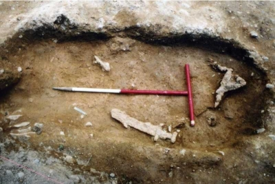 The Viking Grave under excavation at Woodstown Viking Site Waterford (Courtesy of ACS Ltd)