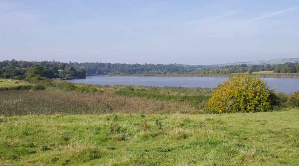 An Image of the location of the Viking Age Settlement in Woodstown Waterford