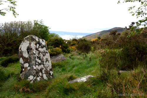 Graves of the Leinstermen, Co. Tipperary