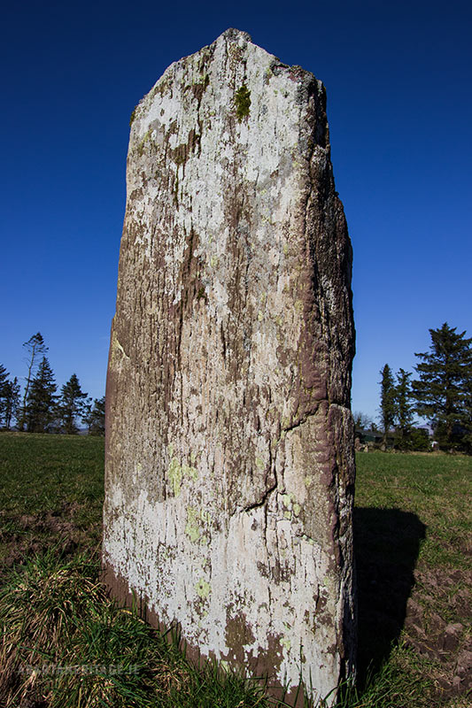 Priestown Ogham Stone, South Tipperary